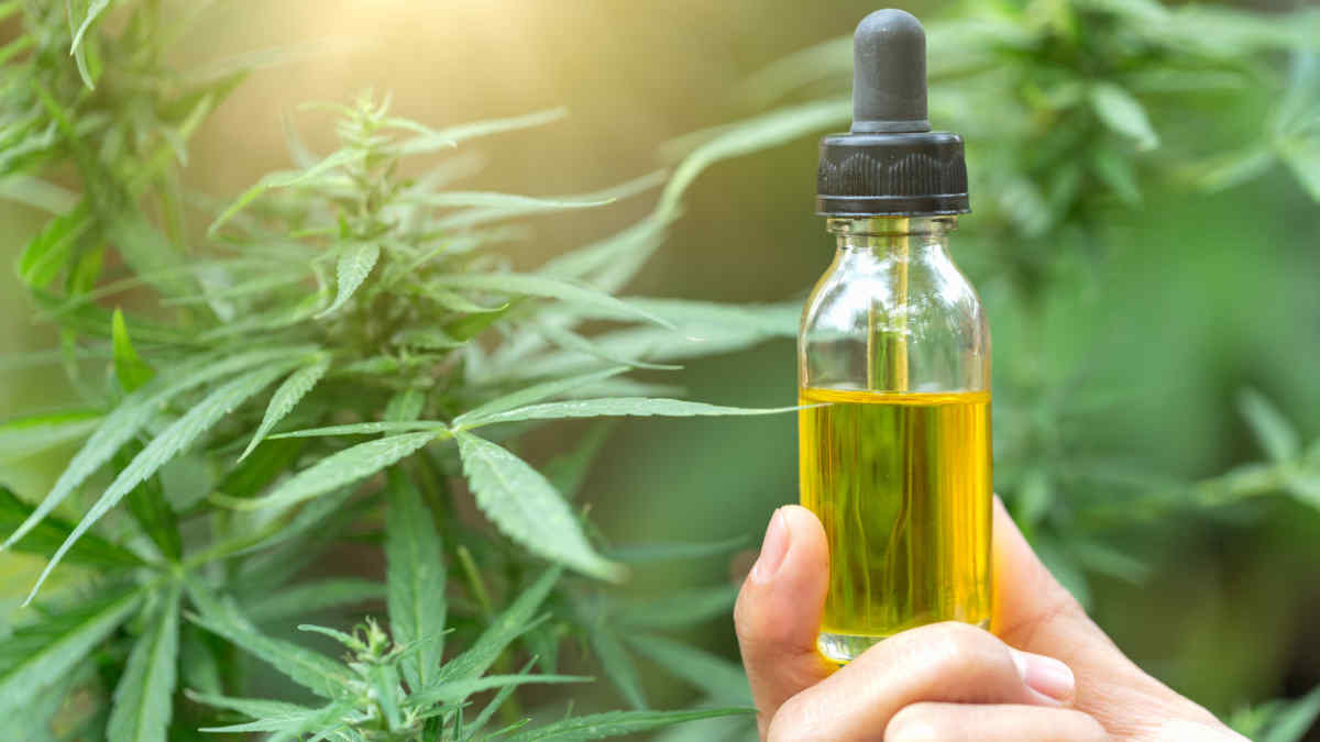 The Utmost Comprehensive Beginners Guide to CBD Supplements