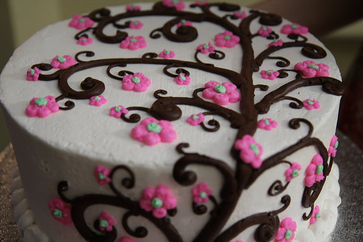 Explore Different Cake Frostings With Ido Fishman
